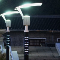 Solar landscape light in Gutian congress